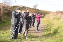 Nov 19 Field Trip Fethard