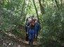 Oct Field Trip Kellys Wood New Ross
