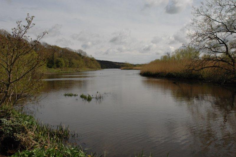 Jamestown nature reserve