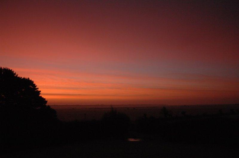 sunrise on 31st December over Raven nature reserve